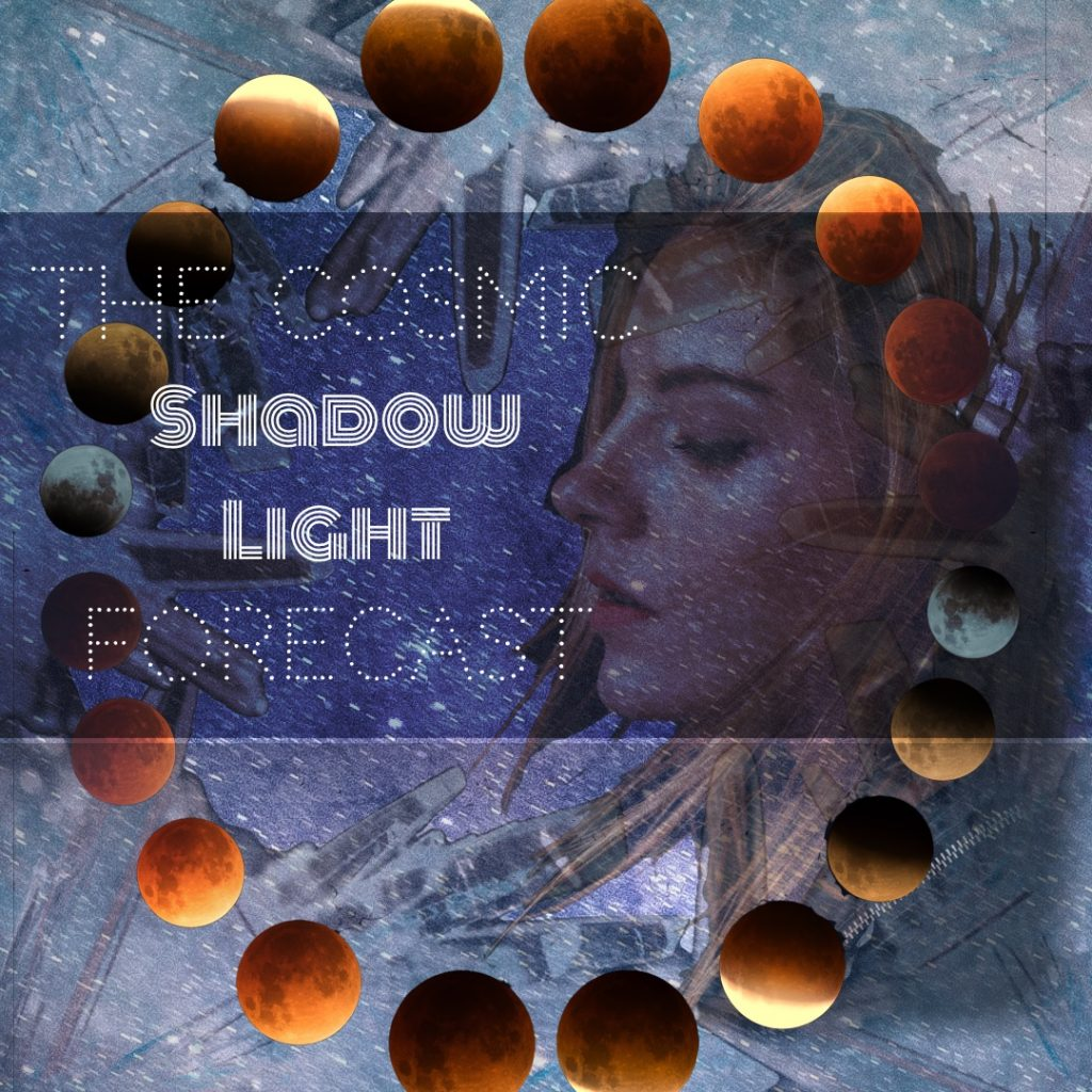 The Cosmic Shadow Light Forecast!