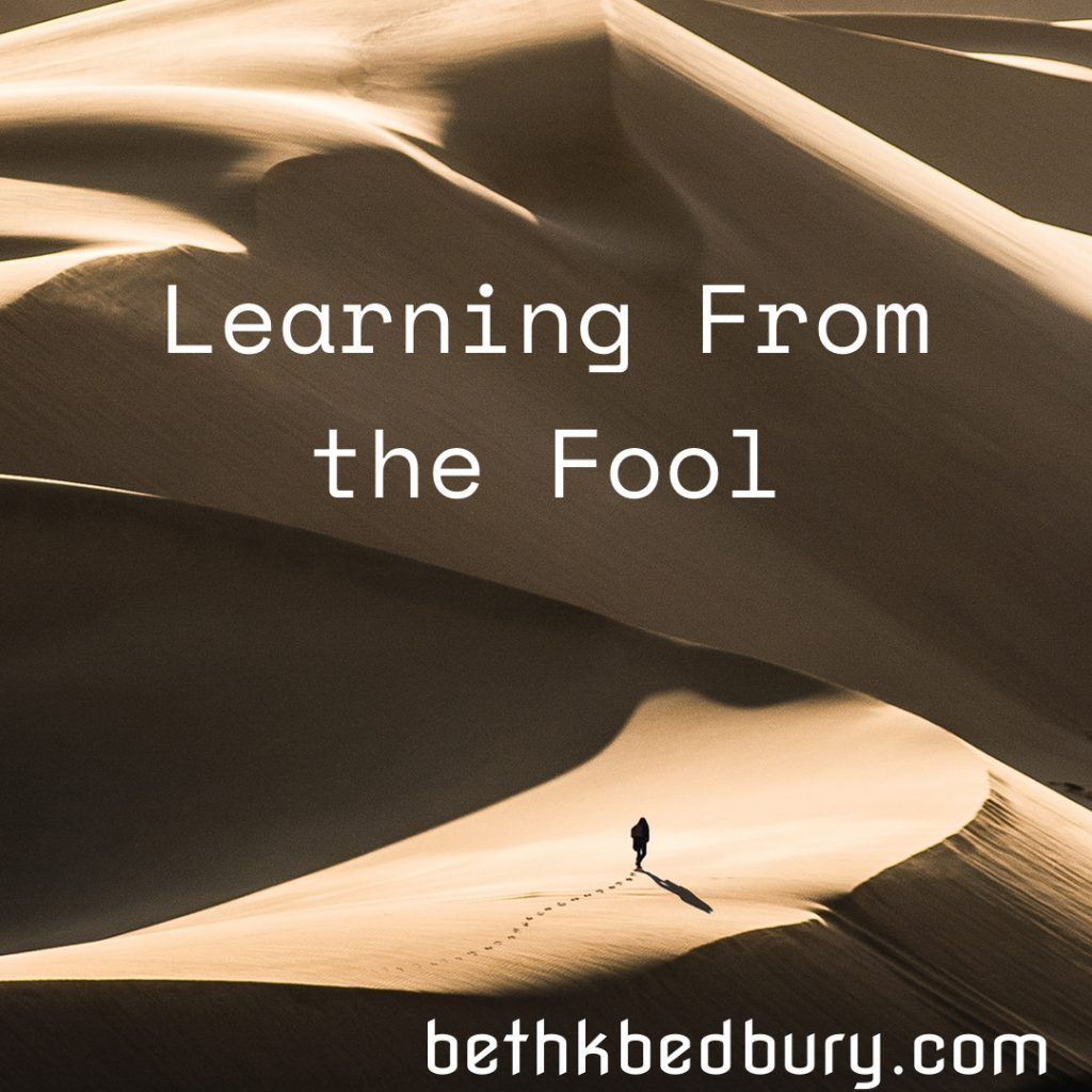 Learn From the Fool
